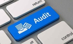 Diklat Audit Pengadaan