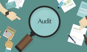 Bimtek Tata Cara Audit Kinerja Pemerintah di Bali